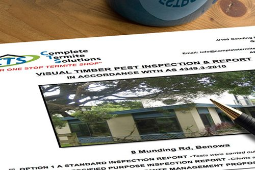 Pest Inspection. Complete Termite Solutions & Pest Control.